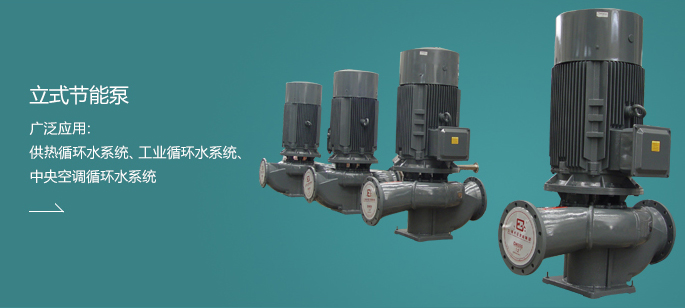 立式节能泵